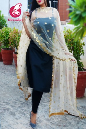 Off White Heavy Net Embellished Border Dupatta