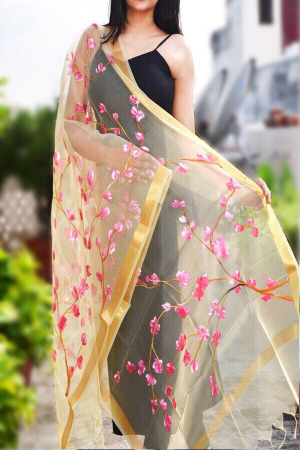 Cream Organza Floral Hand Painted Stole