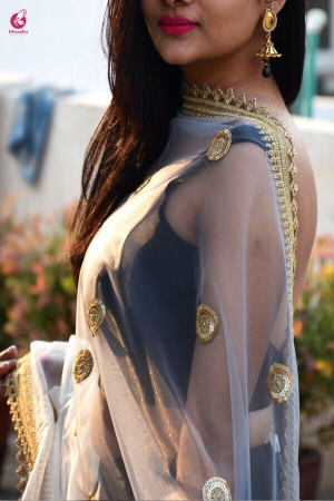 Light Grey Heavy Net Dupatta